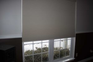 Cellular Shades & Blinds